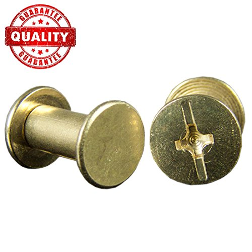 Chicago Binding Screws sex bolt barrel nut barrel bolt post screw Phillips/Cross head, Suitable for all kind of art and leather, Made of Stainless Steel never rust, Length 1/4'' 100sets (Gold) by Lausatek
