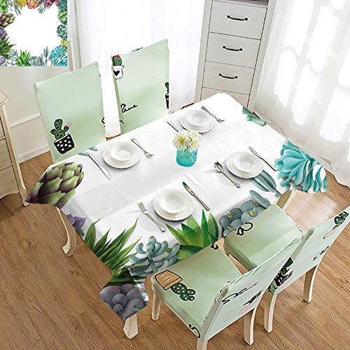 DILITECK Stain-Resistant Tablecloth Succulent Frame with Various Succulent Plants Collection Vivid Garden Tropical Nature Image Soft and Smooth Surface W70 xL84 ()