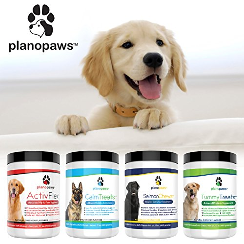 Cheapest Tummy Treats, best Probiotics for Dogs, Helps