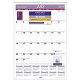 at-A-Glance AY328-18 Academic Wall Calendar, July 2017 - June 2018, 15-1/2'' x 22-3/4'', Wirebound (AY328)