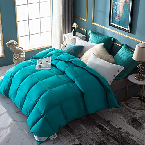 WarmKiss Premium Home Goose Down Comforter Queen 50oz Fill Weight 400TC 600 Fill Power Duvet Insert Soft Down Proof Shell Hypoallergenic for Autumn & Winter Turquoise Blue (Queen) (Turquoise Bedding Color)