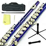 Sky Closed Hole C Flute with 1 Year Manufacturer