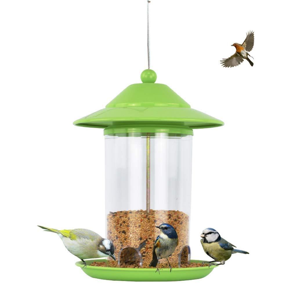 Feeder Bird Park Garden Wild Bird Outdoor Food Container