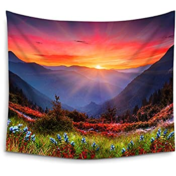 Amazon Com Mugod Mountain Nature Tapestry Rocky Mountain Sunset With Red Blue Flowers Wall