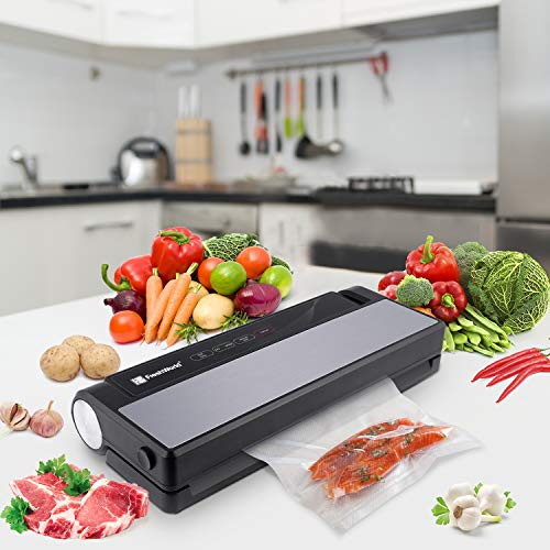 Buy what is the best foodsaver system