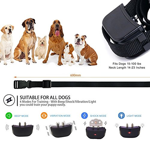 Dog Training Collar, Outdoor Pet trainer, Shock Bark Collar With Remote, Electronic For Large Small dogs- Waterproof, 15Lbs - 100Lbs, 300 Meters Range by Liife (Image #4)