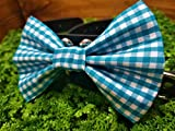 Blue Gingham Checkered Pet Bow Tie