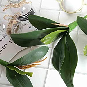 Fine Phalaenopsis Artificial Flower Simulation Leaves Potted Plant Leaf Butterfly Orchid Bonsai with Ceramic Vase Wedding Party Home Centerpiece Decor (Green L) 4