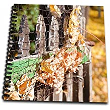 3dRose Jos Fauxtographee- Ole Fence In Fall - Fall leaves stuck in an old wooden picket fence in Autumn - Drawing Book 8 x 8 inch (db_266329_1)