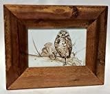 Owl with Martini - Watercolor and Ink in Recycled Wood Frame