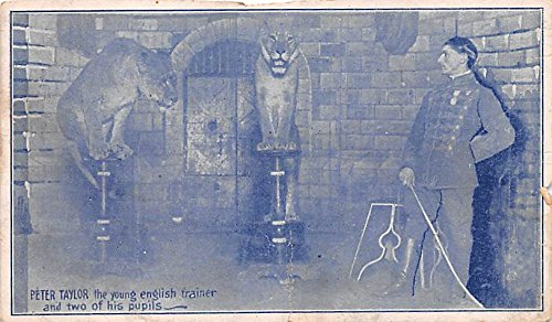 Perry Taylor the young English trainer Circus Animal Trainer Postcard