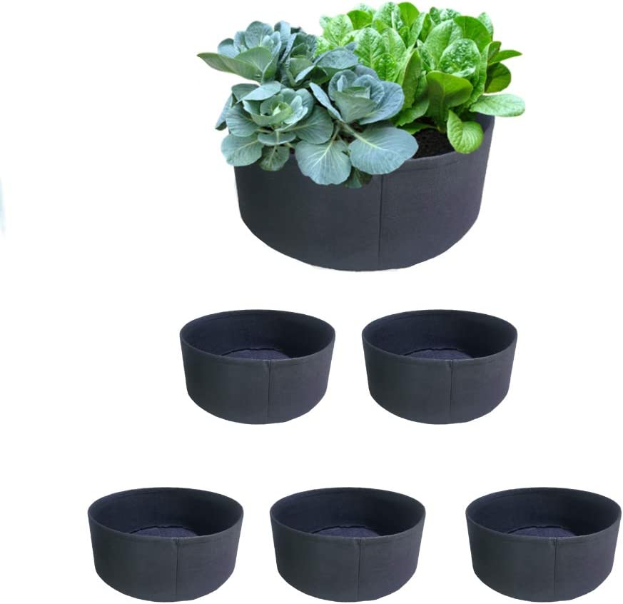 10 Gallon Fabric Grow Pots Garden Raised Bed 5 Pack Without Handles for Lettuce, Cabbage, Tomato, Potato, Chilli, Eggplant, &Carrots Planting.