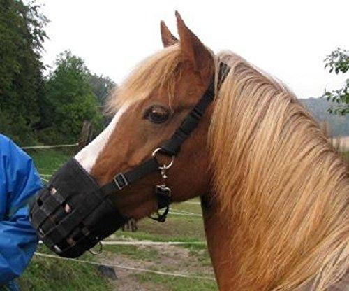 Restposten!!! Maulkorb, Fressbremse, für Ponys gegen Kolik, Hufrehe