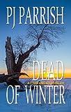 DEAD OF WINTER (Louis Kincaid Book 2)