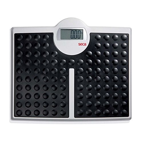 Seca 813 Robusta High Load-Bearing Capacity Electronic Flat Scale by Seca