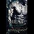 Heat: A Dragon Romance (Dark Kings Book 12)
