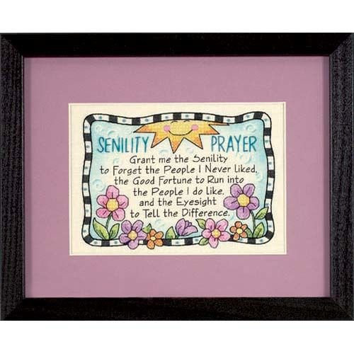 - Dimensions Needlecrafts 6945 Stamped Cross Stitch, Senility Prayer