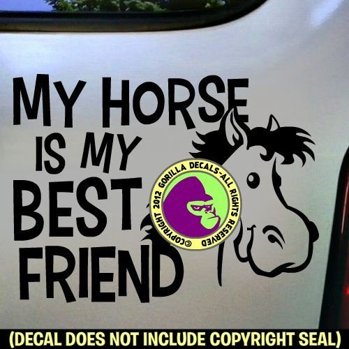MY BEST FRIEND IS MY HORSE Vinyl Decal Sticker E