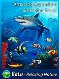 Amazing Aquarium & Relaxing Music - BaLu - Relaxing Nature