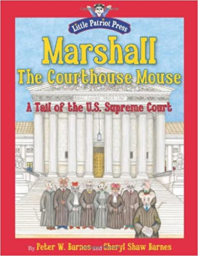 Kids learn about the judicial branch of government - Activities for Kids from HowToHomeschoolMyChild.com