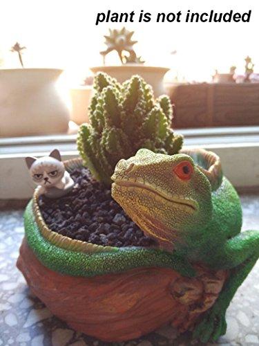 5.5 Inch Cute Animal Lizard Shaped Cartoon Home Decoration Desktop Succulent Plants Cactus Vase Flower Planter (Lizard Animals)