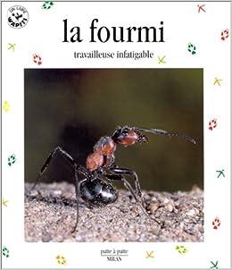 Couverture de La fourmi