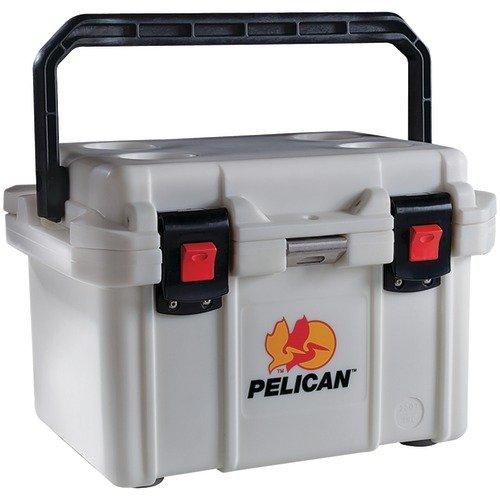 Pelican Wall - 3