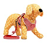 Uniquorn Stylish Cute Dog Chest Strap With Traction Rope Teddy Pet Traction Rope