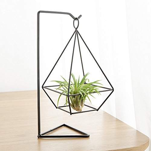Mkono Air Plant Stand Holder Metal Airplant Tillandsia Hanger Tabletop Planter, Diamond (Metal Environment Office)