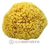 Natural Sea Sponge 4-5'' by Spa Destinations''Creating The Perfect Bath and Shower Experience'' Amazing Natural Renewable Resource! 100% Satisfaction Guarantee!