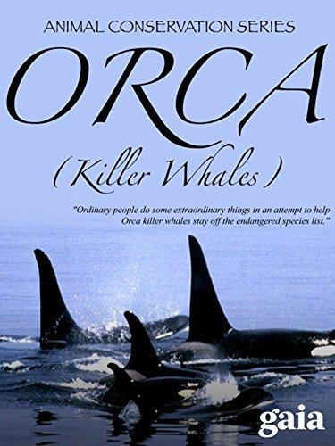(Orca (Killer Whales))