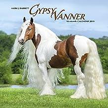 Gypsy Vanner Horse 2019 Wall Calendar