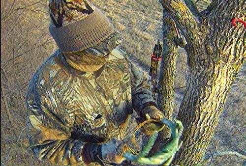 Bill Jordan Iowa Encounter - Rattle Bucks