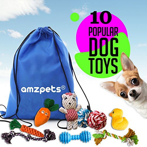 Buy small dog toys
