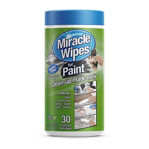 Premium Cleaning Wipes for Paint - Safely Clean Up All Types of Paint, Caulk, Epoxy, Acrylic, Brushes, Oil & More. (30 Count MiracleWipes) - Hyde Wall Cabinet