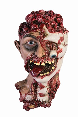 Forum Novelties WMU Halloween Prop: Rotted Zombie Head Prop ()