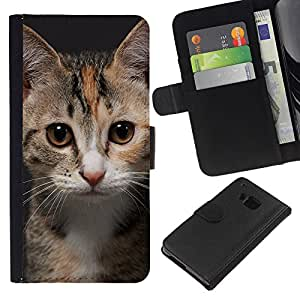 LECELL--Cuero de la tarjeta la carpeta del tirón Smartphone Slots Protección Holder For HTC One M9 -- Gatito joven del gato --