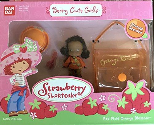 Strawberry Shortcake Berry Cute Girls Red Plaid Orange Blossom Playset