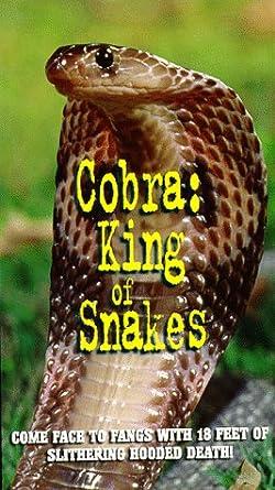 Amazoncom Cobraking Of Snakes Vhs Cobra King Of Snakes Movies