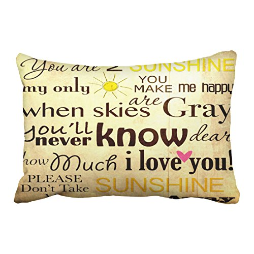 Emvency Decorative Throw Pillow Cover Queen Size 20x30 Inches You Are My Sunshine My Only Sunshine Pillowcase With Hidden Zipper Decor Cushion Gift For Home Sofa Bedroom Couch Car (Vase Patterned Southwestern)