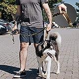 EXCELLENT ELITE SPANKER Tactical Bungee Dog Leash