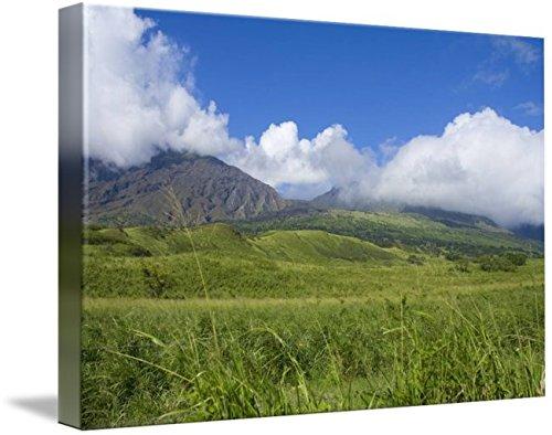 Wall Art Print entitled Hawaii, Maui, Haleakala, Kaupo Gap, Green And Calm by Design Pics | 48 x - Gap Kaupo