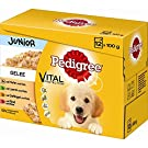 Pedigree Junior in Gelee Multipack | 4 x 12x100g Hundefutter
