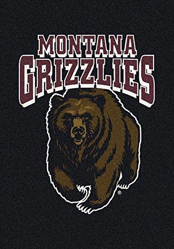 NCAA Team Spirit Door Mat - Montana Grizzlies, 44'' x 68'', Multi by Millilken