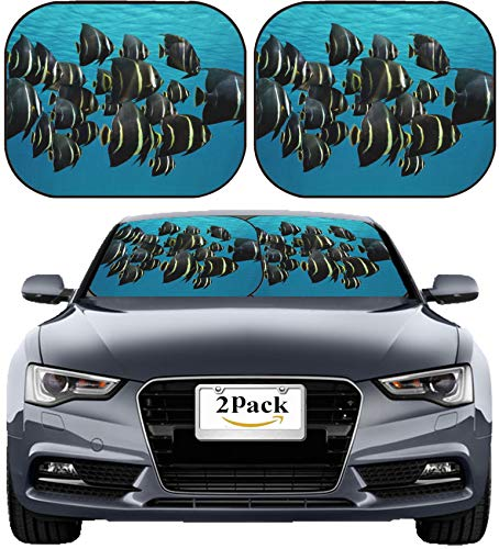 MSD Car Sun Shade Windshield Sunshade Universal Fit 2 Pack, Block Sun Glare, UV and Heat, Protect Car Interior, Image ID: 34960186 School of Tropical Fish French Angelfish Under Water Surface Caribbe - French Angel Fish