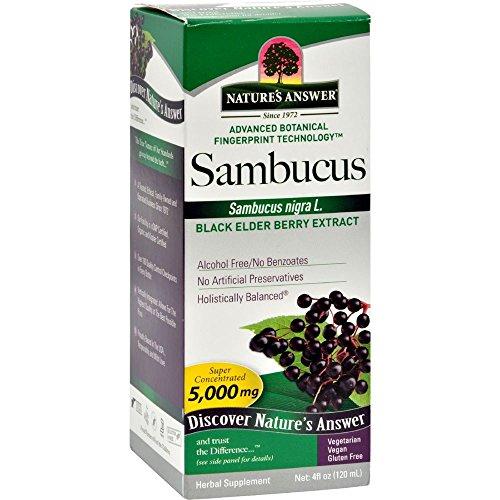 Nature's Answer Alcohol-Free Sambucus Black Elder Berry Extract, 4-Fluid (Black Elderberry Liquid)