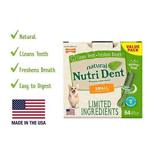Nylabone Nutri Dent Dog Dental Chews Limited Ingredient | Small Size | Fresh Breath | 64 Ct