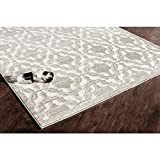 Rugs America RA25996 RV500A Area Rug, 5' x 8', Cream