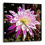 3dRose dpp_32408_1 Decorative Colorful Garden SW Southwest Desert Cactus Yellow Purple Pink Classic Flower Abstract-Wall Clock, 10 By 10-Inch