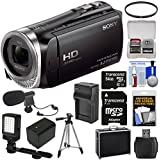 Sony Handycam HDR-CX455 8GB Wi-Fi HD Video Camera Camcorder with 64GB Card + Battery & Charger + Hard Case + Tripod + LED Light + Microphone + Kit
